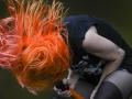 Pinkpop  2013. Hayley Williams van de band Paramore.